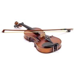 Verona Violin - Skrzypce Custom 4/4